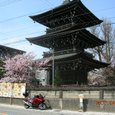 高山国分寺の三重の塔